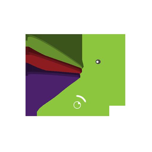 Colibri Multicolor V