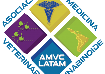 AMVC LATAM 2